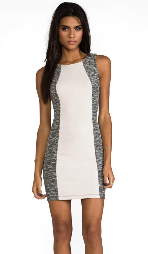 Paley Dress