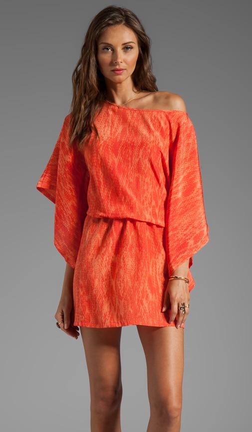 Merida Print Dress