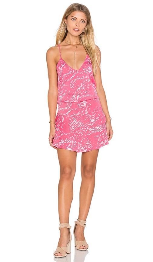 Karina Grimaldi Fiesta Print Mini Dress