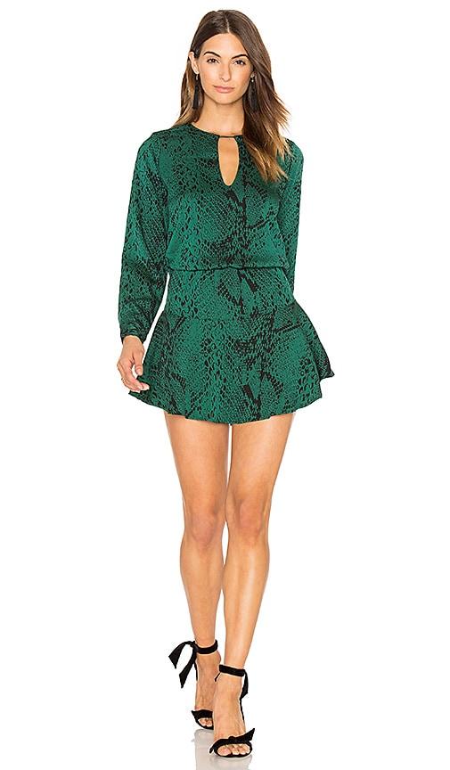 Karina Grimaldi Jackie Print Mini Dress in Green
