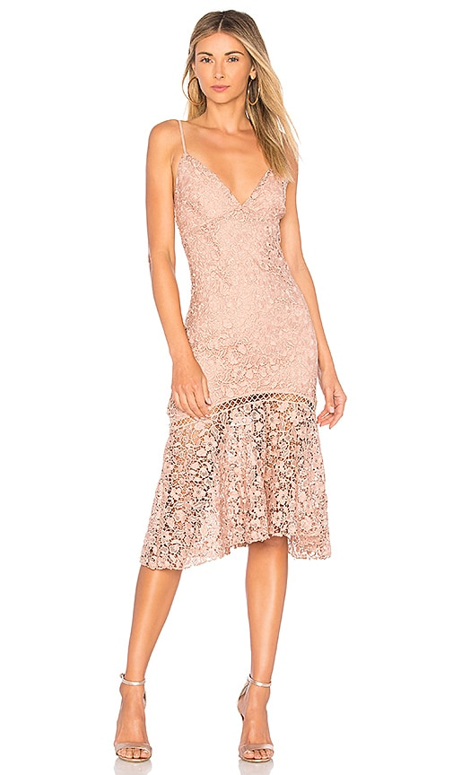 Karina Grimaldi Diana Lace Dress in Rose