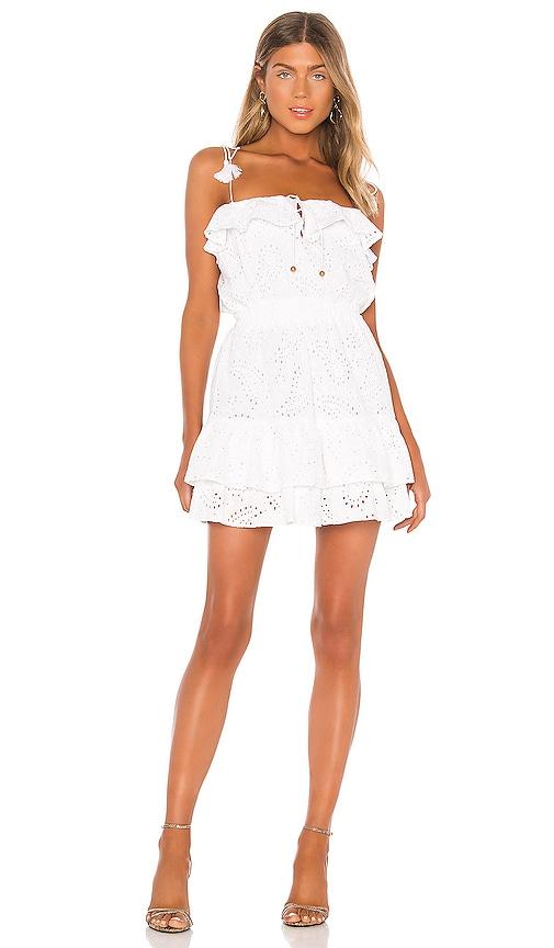 Karina Grimaldi Paloma Eyelet Mini Dress in White | REVOLVE