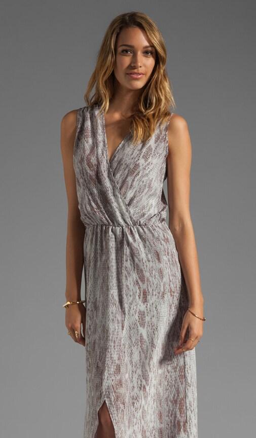 Raffaela Print Maxi Dress