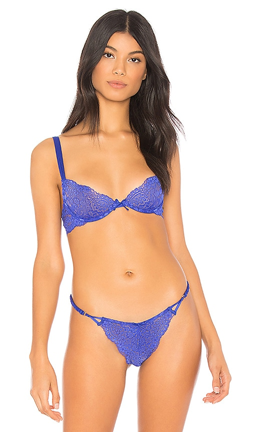 KENDALL + KYLIE Plunge Lace Bra in Blue