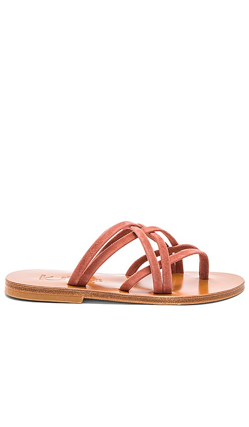 K Jacques Aloes Sandal in Rose
