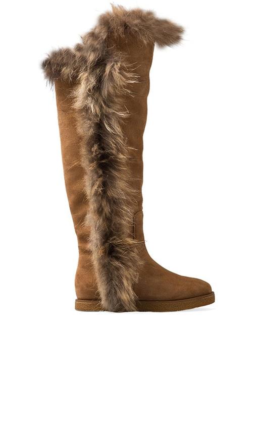 Sasha II with Fox Fur