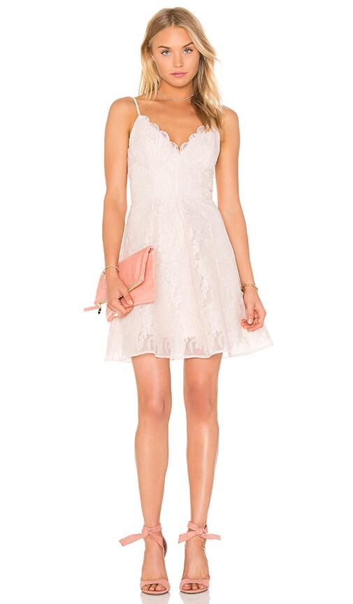 keepsake Sundream Lace Mini Dress in Shell