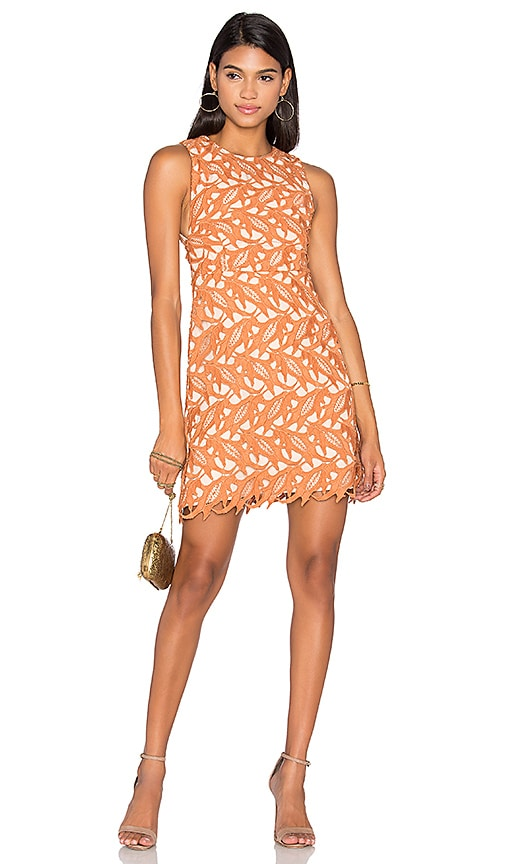 keepsake The Moment Lace Dress in Peach