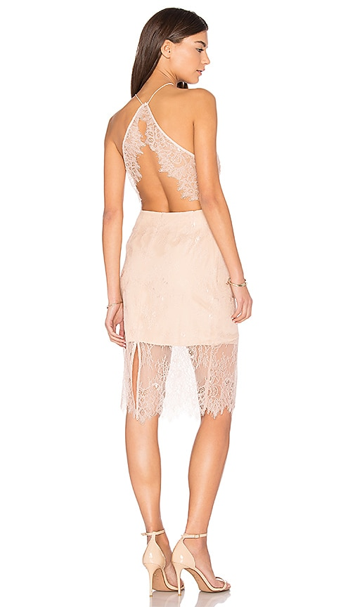 keepsake Great Love Lace Dress in Pink
