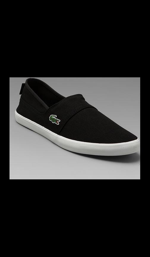 Clemente Shoe
