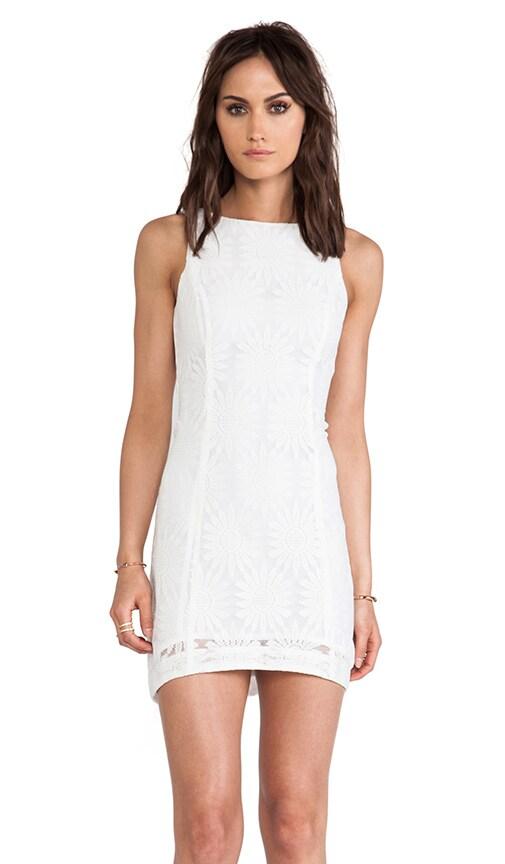 Drew Lace Dress