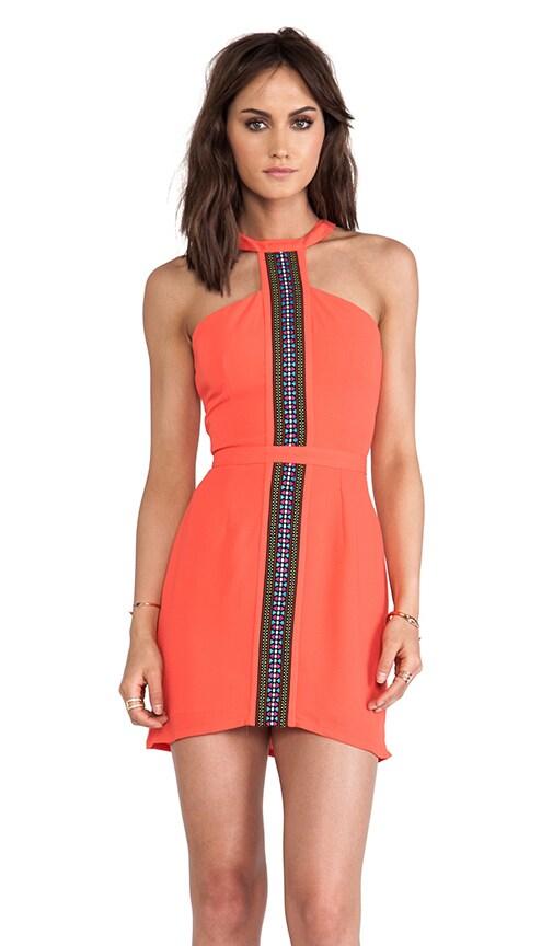 Sonoma Trim Dress