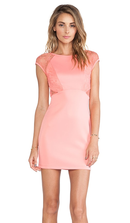 Laced Neoprene Dress