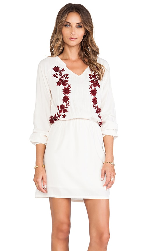 Embroidered Drop Waist Dress