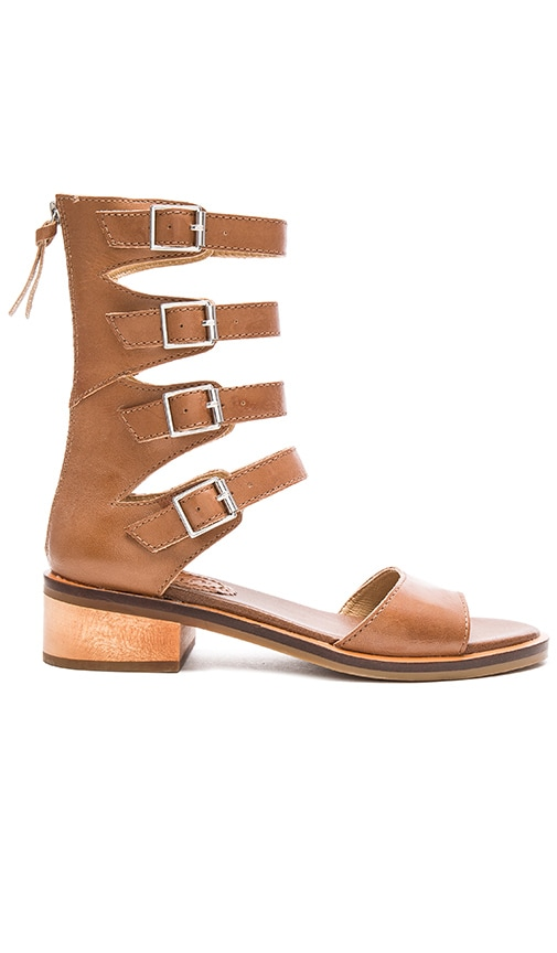 Latigo Haiku Sandal in Brown