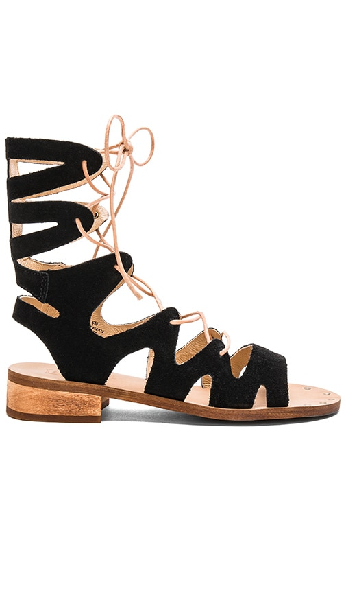 Latigo Rapper Sandal in Black