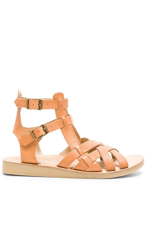 Latigo Wow Sandal in Tan