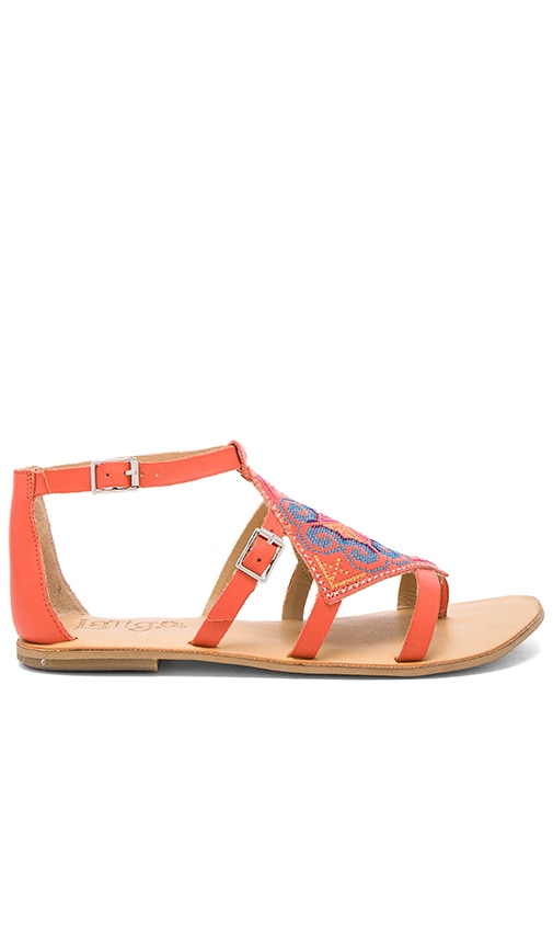 Latigo Om Sandal in Papaya
