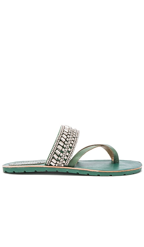 Latigo Shaman Sandal in Green