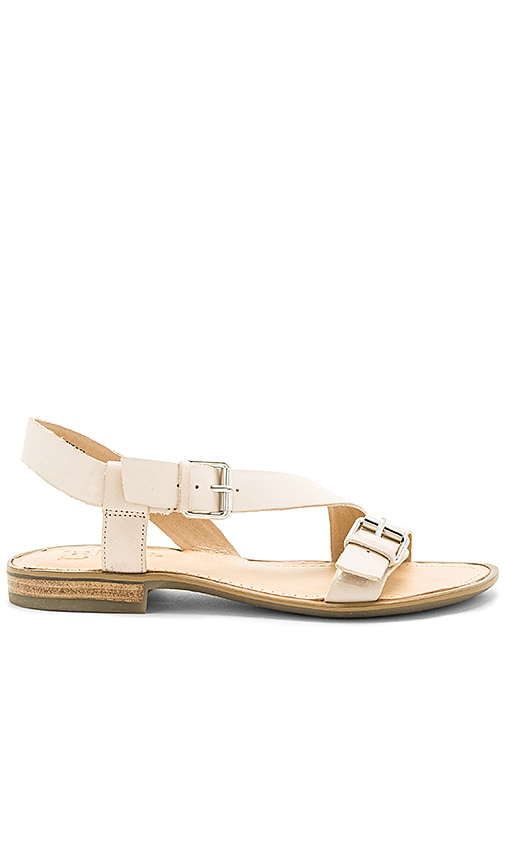 Latigo Gamma Sandal in Cream
