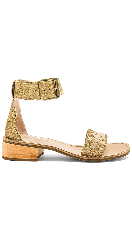 Latigo Tana Sandal in Metallic Gold