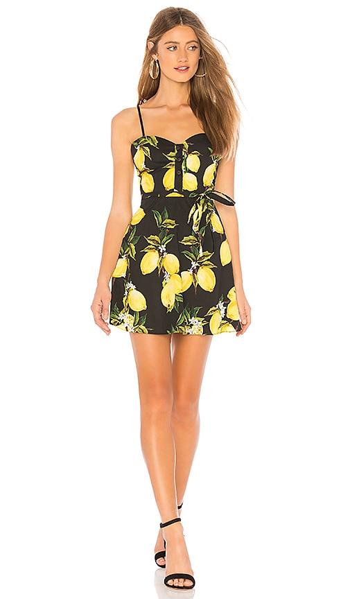 The Harlow Mini Dress