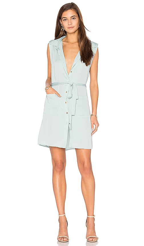 The Sleeveless Shirt Dress