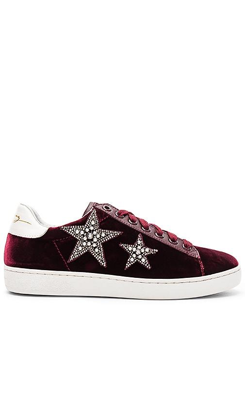 Lola Cruz Star Velvet Sneaker in Burgundy