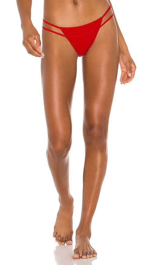 Liz Bottom