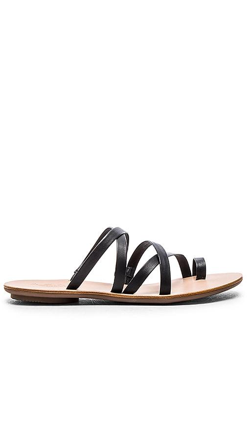 Loeffler Randall Sarie Sandal in Black