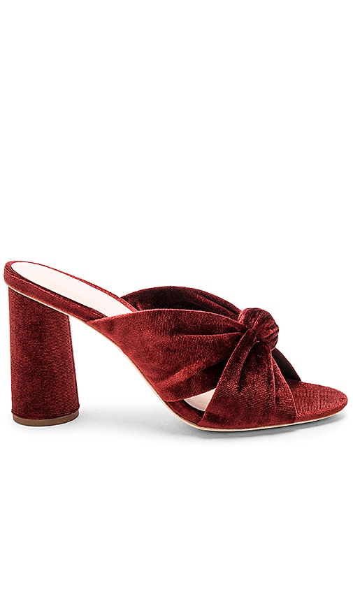 Coco Knot Mule