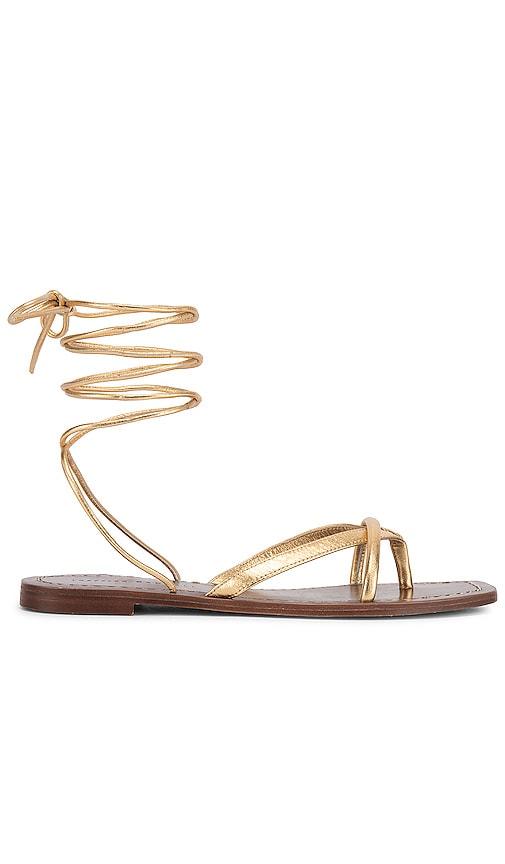 Thong Wrap Sandal