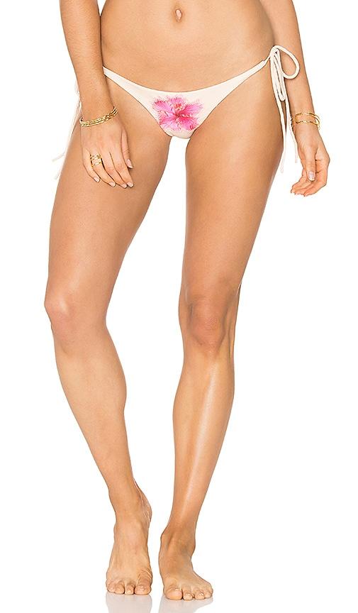 lolli swim Hugs Bikini Bottom in Blush