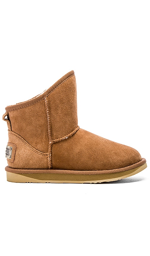 Australia Luxe Collective Cosy Extra Short Boot in Chestnut