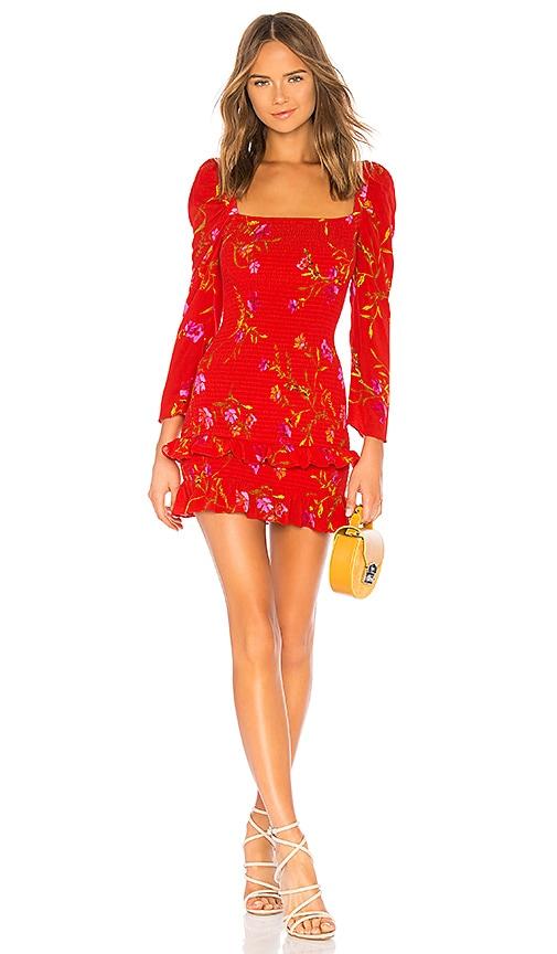 Valentina Mini Dress