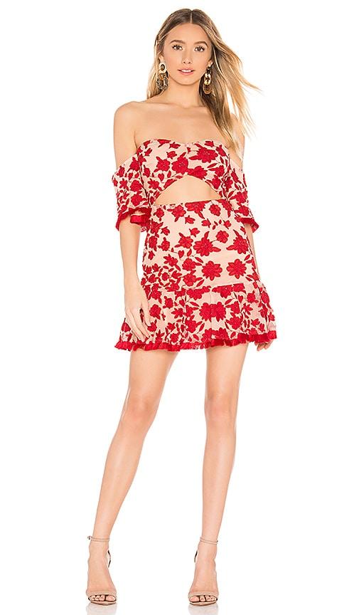 Halo Mini Dress