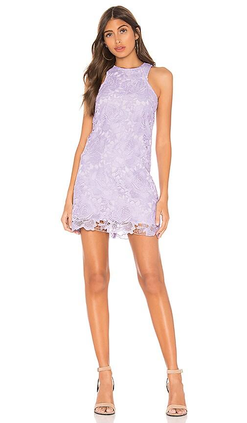 Lovers + Friends Caspian Shift Dress in Lavender | REVOLVE