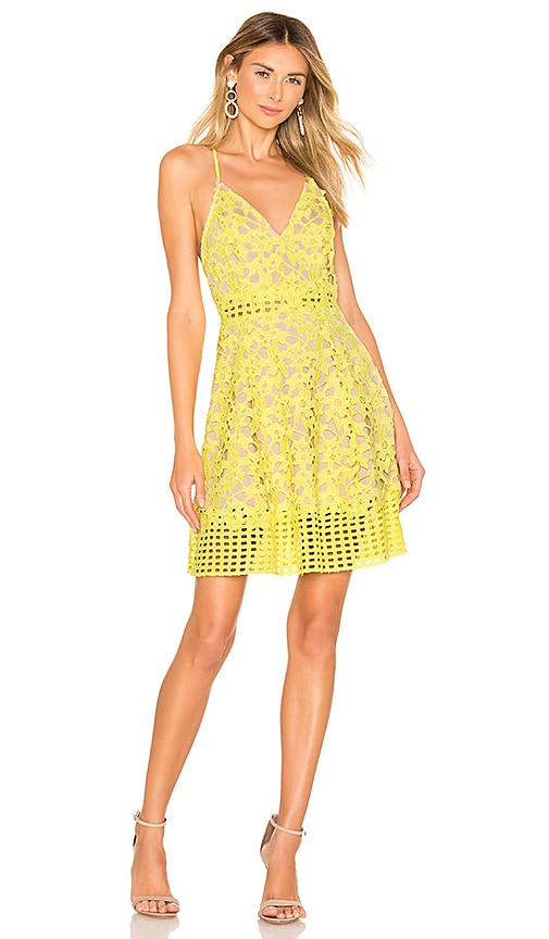 Lovers + Friends Bellini Dress in Yellow