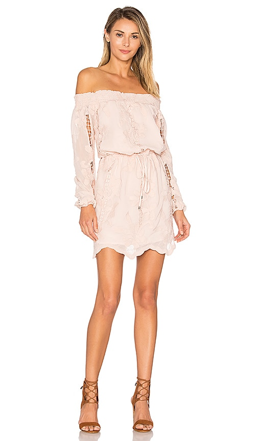 Lovers + Friends Kory Dress in Blush