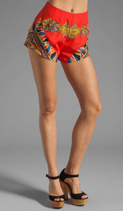 Fashionista Shorts