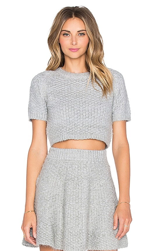 Lovers + Friends Be Flirty Crop Top in Gray