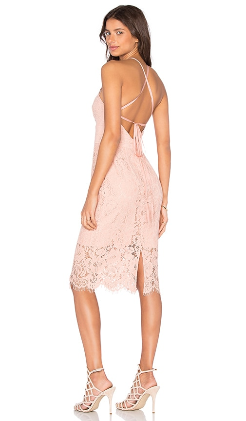 Lover Oasis Halter Dress in Blush