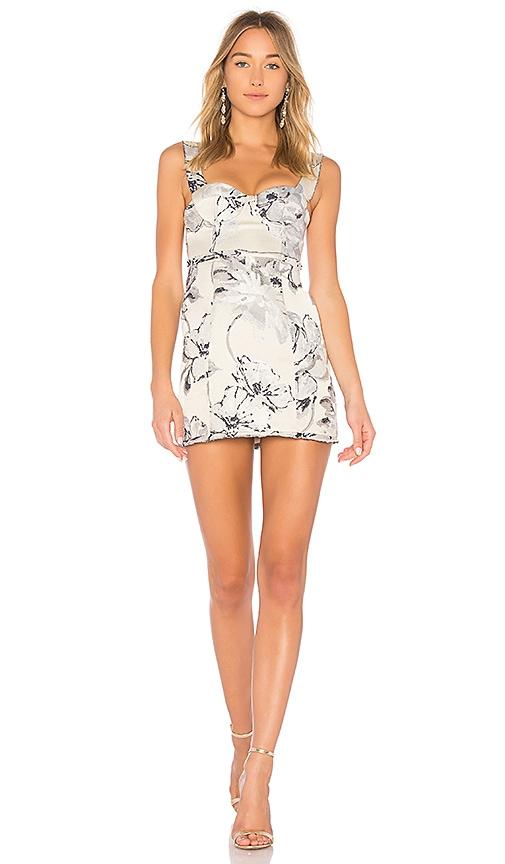 LPA Dress 550 in Gray