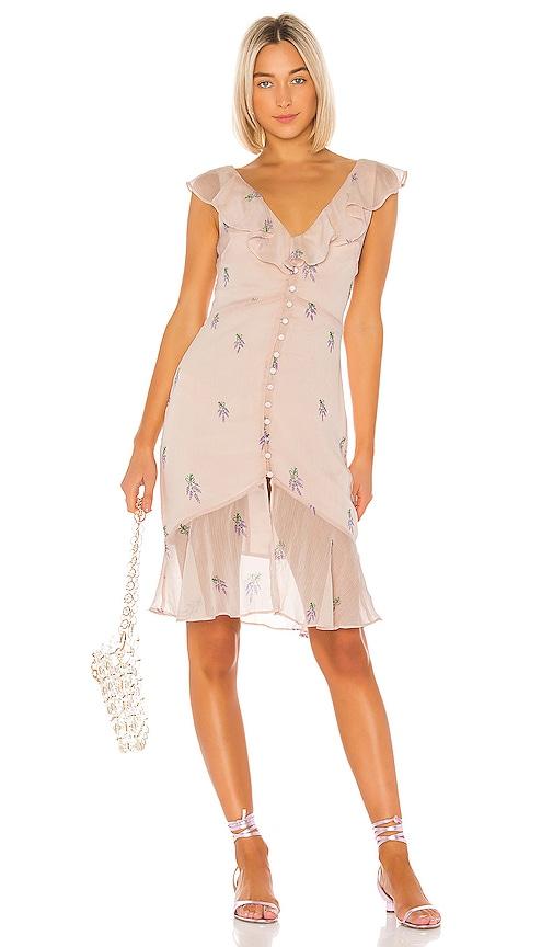 Ciro Embroidered Dress