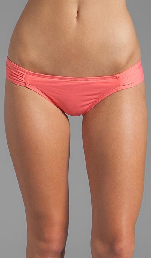 Foxy Classic Bottom