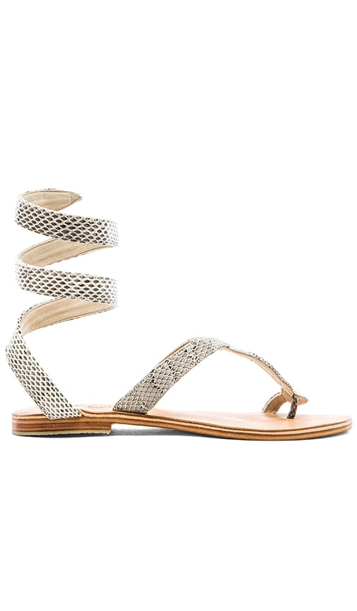 L*SPACE by Cocobelle Snake Wrap Sandal in Gray