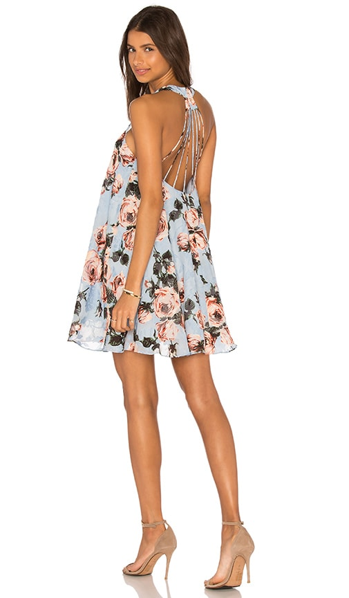 Rose Burnout Dress