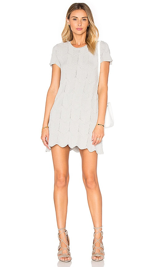 Lucy Paris Campbell Dress in Grey