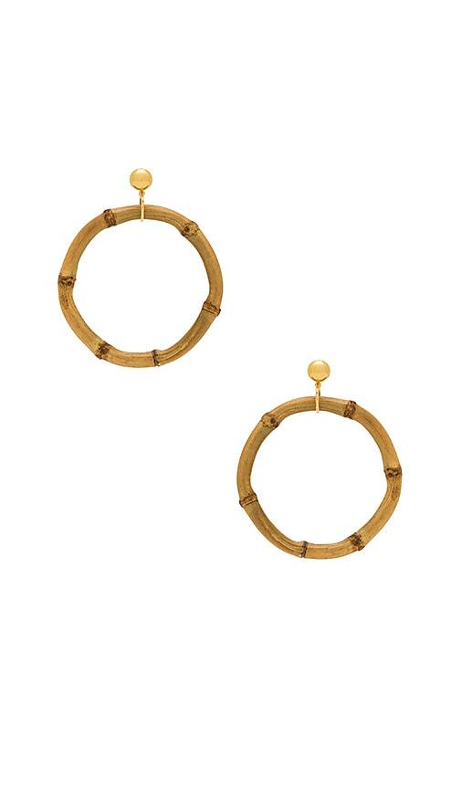 LARUICCI Bamboo Earring in Tan