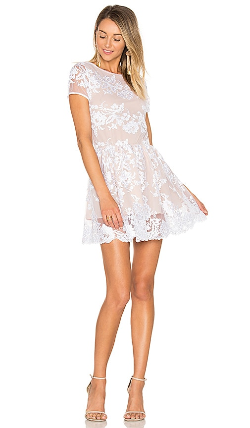 Lurelly French Lace Dress in White